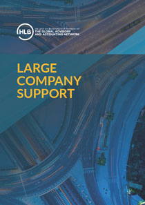 Large Company Support
